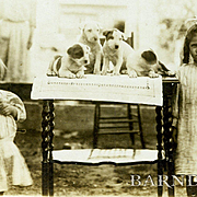 c. 1905 Photo Two Little Girls with Puppies on a Table