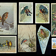 1880s Early Chromo Christmas Cards, Beautiful Winter Birds, Holly, Snow, Mistletoe