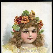 "1896 Frances Brundage, Girl Wears Crown of Nasturtiums, ""Queen Bess"", Original Print from Little Belles &  Beaux"