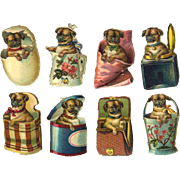 8 Miniature Victorian Die Cuts, Pug Puppies Playing in Baskets, Egg, Boxes, Pail, etc #203