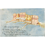1918 Rose O'Neill Christmas Postcard, Kewpies and Birds on Branch Singing