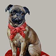 Huge Victorian Die Cut Pug on a Pillow, 13 x 10