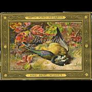 Beautiful Victorian Greeting Card, Kind Regards & Best Wishes... Dead Bird