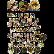 47 pcs Tiny Cat Heads & Dog Heads Victorian Die Cuts