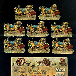 8 Pug Die Cuts, Dogs Look Over Fence, Baco-Curo Tobacco Victorian Trade Card