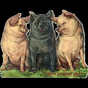 "Raphael Tuck 3 Pigs ""Love at First Sight"" Large Cardboard Die Cut (Happy Hogs)"
