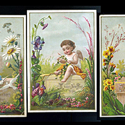 c.1880's Set of 3 Embossed New Years Cards, Cherubs and Flowers