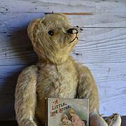 Pre-1910 American Teddy Bear & Miniature Nister Book