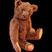 Lovely Brown Steiff Teddy Bear