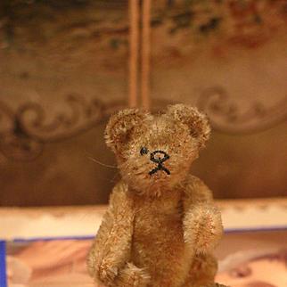 * on hold for D.* Little Steiff Teddy Bear