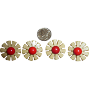 4 Beautiful Bakelite & Celluloid Realistic Figural Flower Buttons