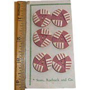 Sears Roebuck 6 MOC Buffed Celluloid Pink Cream Deco Buttons