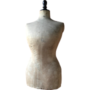 Edwardian Pigeon breasted Tabletop mannequin