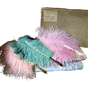 Three Ostrich Feather Fans belonging to the Dowager Countess of Lucan circa 1920's