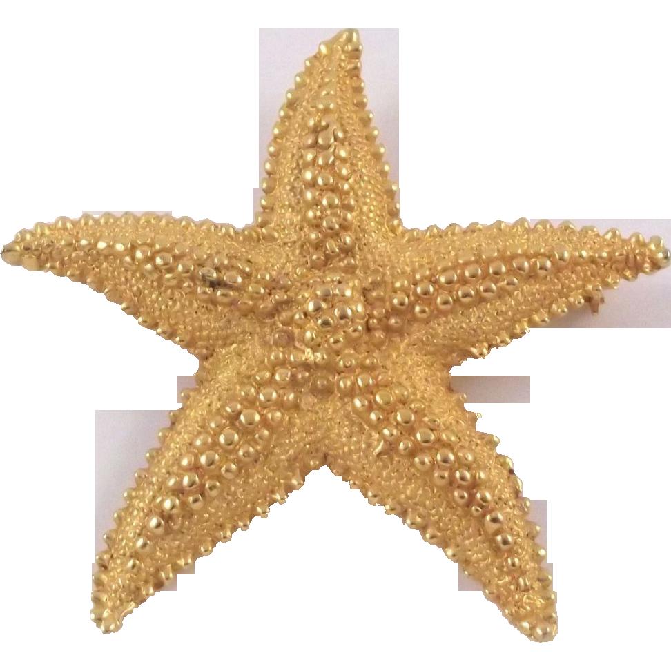 starfish png