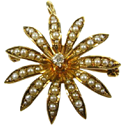 Victorian 1800's 14k Yellow Gold 10pt Natural Mine Cut Diamond and Seed Pearl Floral Pin Pendant