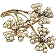 Antique Seed Pearl And Diamond Four Leaf Clover Brooch