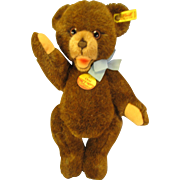 "Adorable 12"" Steiff Mohair Teddy 'Orsini' Tags"
