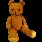"Adorable Sad 13"" Vintage Bear, Glass Eyes"