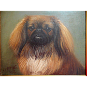 Pekingese Oil By Henry Crowther