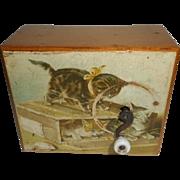Lovely Musical Box Cat Litho Image c1910