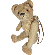 Rare Teddy Bear Purse c1915