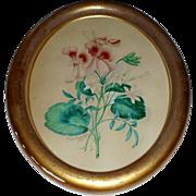 Beautiful Botanical Watercolour Signed & Dated 1874