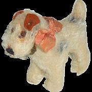 Steiff Foxy Fox Terrier Small Size 1950's