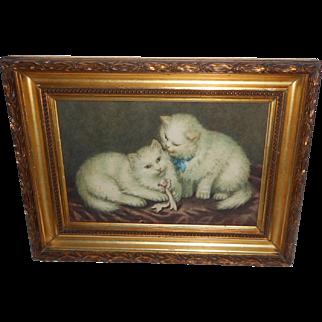 Delightful Watercolour Of White Persian Cats c1915