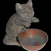 Unusual Antique Cold Painted Spelter Cat Vesta/Match Holder c1915