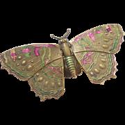 Rare Avery Butterfly Needlecase c1871