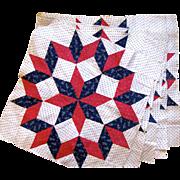 Twelve Antique Quilt Squares