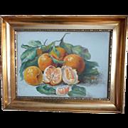 Still-life  of Oranges OOB