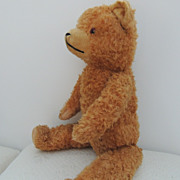 Charming Vintage Mohair Teddy Bear