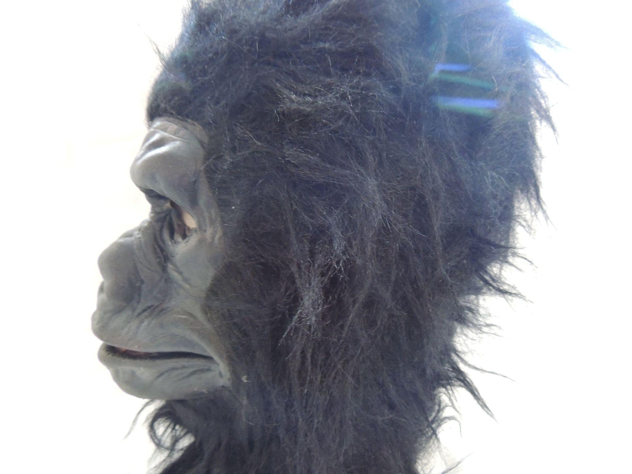 1979 Be Something Studio Halloween Gorilla Mask from ...