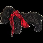 Adorable black mohair spaniel dog c1930s
