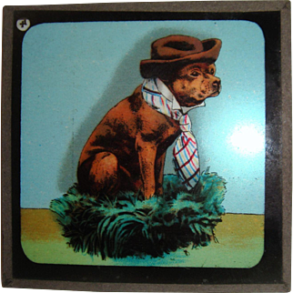 Lantern slide bulldog in hat