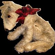 Delightful alpha Farnell sitting dog nightdress case