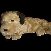Simply adorable dog pajama case
