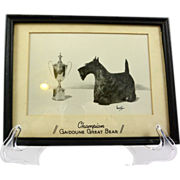 1963 Scottish Terrier Club of America Winner's Photo - Champion Great Bear