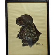 Black Cocker Spaniel Portrait Print Gladys Emerson Cook c.1947