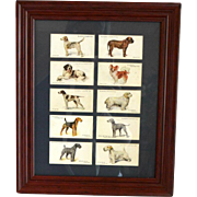 Vintage Cigarette Cards Framed Dog Series c.1930