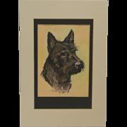 """Blackie"" Scottish Terrier Portrait by Ole Larsen Calendar Page c. 1030-1940"