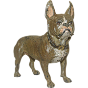 Antique Cold Painted Austrian Bronze French Bulldog
