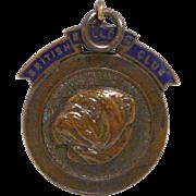 Vintage Bronze British Bulldog Club Medal