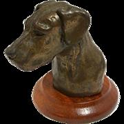 Bronze Great Dane Dog Head D. Gray England