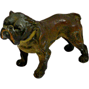 Cold Painted Spelter Bulldog c.1920's