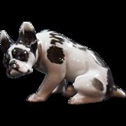 Rare Vintage Rosenthal French Bulldog- Art Nouveau