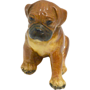 Vintage Mortens Studio Sitting Boxer Puppy Dog c. 1930's-1940's