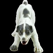 Vintage Gebruder Heubach Porcelain Terrier Dog 1882-1938